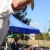 Joust Jay